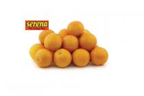 serena handsinaasappels