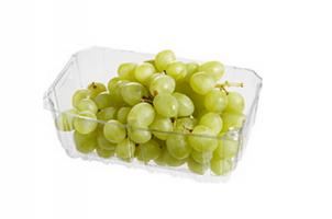 boni pitloze witte druiven
