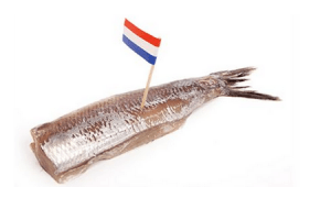 plus hollandse nieuwe met uit