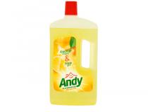 andy allesreiniger citroen