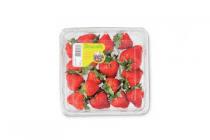 driscolls aardbeien