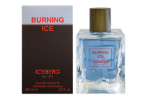 iceberg burning ice