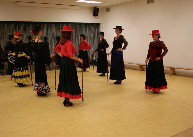 Flamenco gevorderden groep in Enschede 18-02-2018