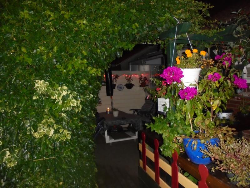 Een foto 1 s,avonds in de tuin