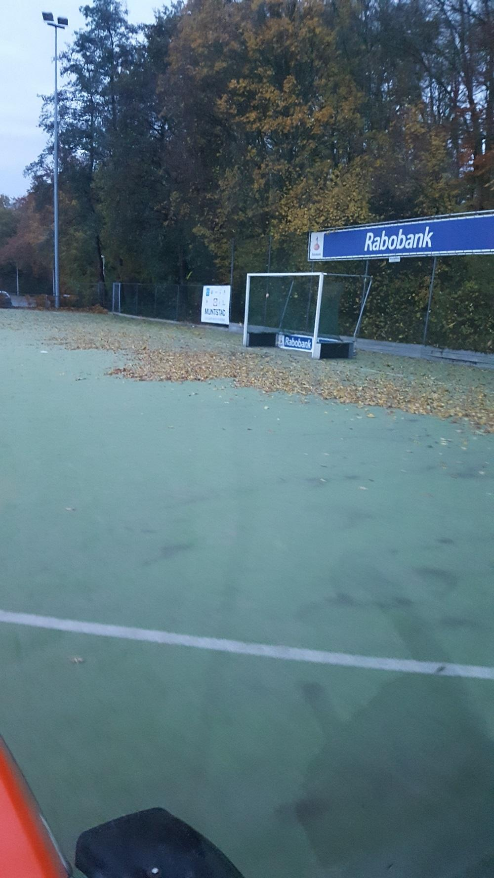 Sportveld onderhoud